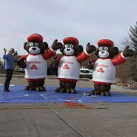State Farm Bear Inflatables