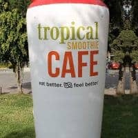 Tropical Smoothie Cafe 10ft Cup